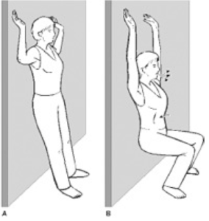 Knee Pain Exercise - Wall Slide