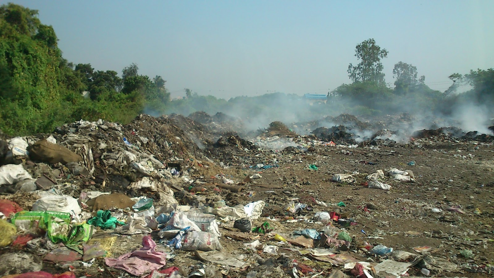 ENVIRONMENTAL ISSUES: POLLUTION