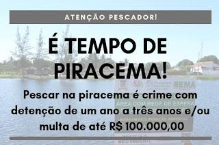 http://vnoticia.com.br/noticia/3252-sfi-alerta-para-o-periodo-da-piracema-seremos-atentos-na-fiscalizacao-diz-secretario