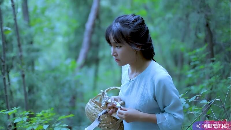 李子柒 Liziqi