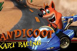 Bandicoot Kart Racing [42 MB] Android