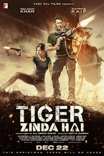 Tiger Zinda Hai 2017 Hindi Movie 200Mb hevc BluRay