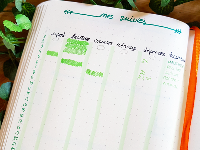 05 blog nimoise nimes bullet journal mai