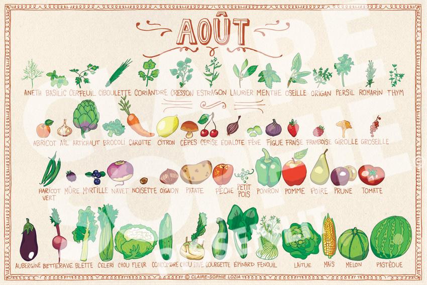 Calendrier d 39 ao t pissenlit - Fruits et legumes aout ...