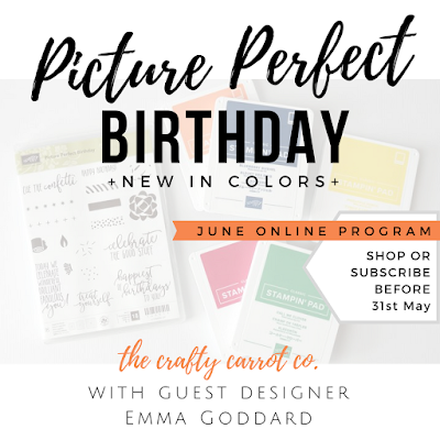 New 2018-2020 In Colors + Picture Perfect Birthday Classes - The Crafty Carrot Co.