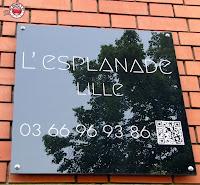 Casa de Huéspedes L'Esplanade a Lille