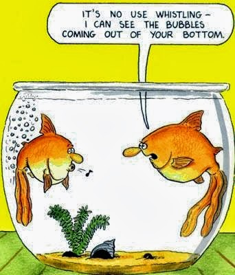 Funny joke fish cartoon - It's no use whistling - I can see the bubbles coming out of your bottom