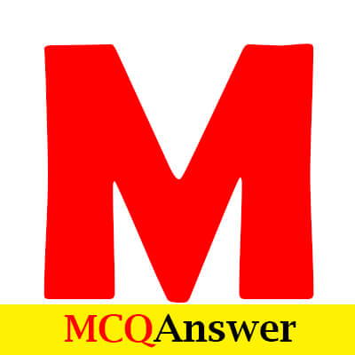 MCQ Answer - Education and Ideas