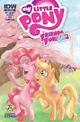 My Little Pony Friends Forever #1 Comic Cover Awesome Cons Variant