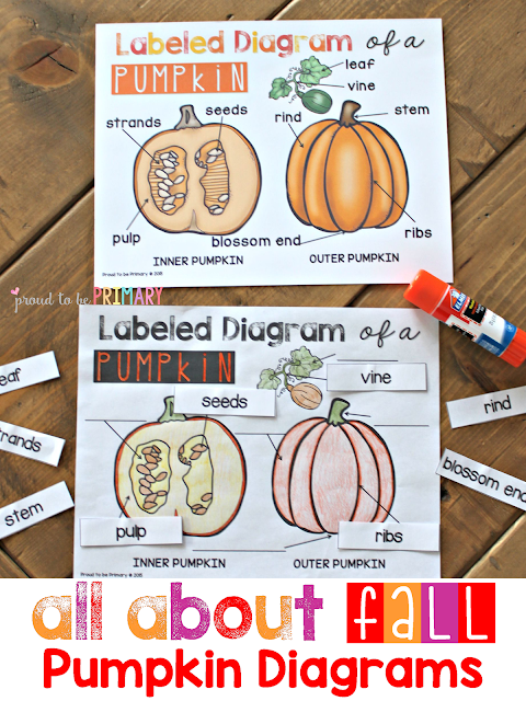 fall lesson plans - pumpkin diagrams