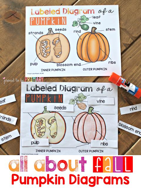 fall lesson plans - pumpkin diagrams