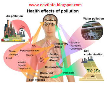 Emerging Environmental Technologies: Pollution Effects On ... Air Pollution Effects On Animals Scholar