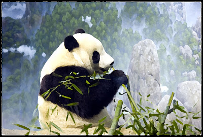 Animation Pictures Wallpapers: Panda Animations Wallpapers