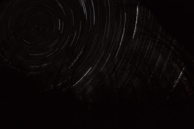 forest star trails small test