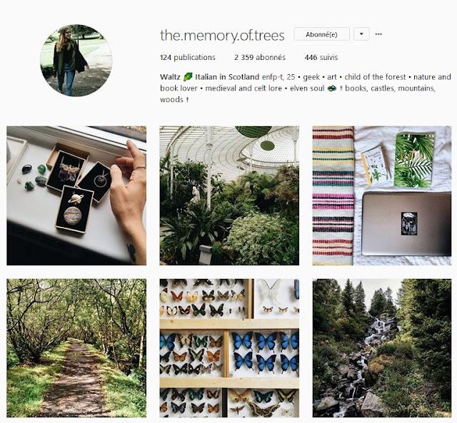 https://www.instagram.com/the.memory.of.trees/