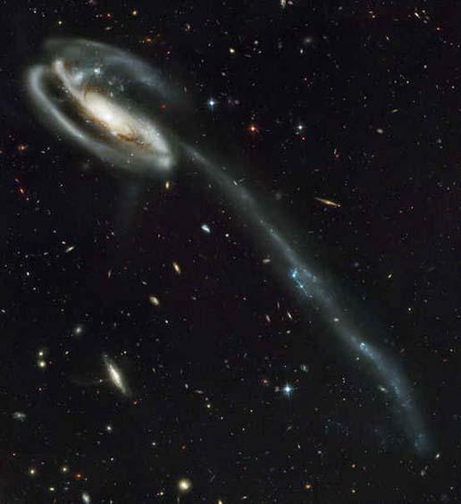 Tadpole Galaxy (Galaksi Kecebong)