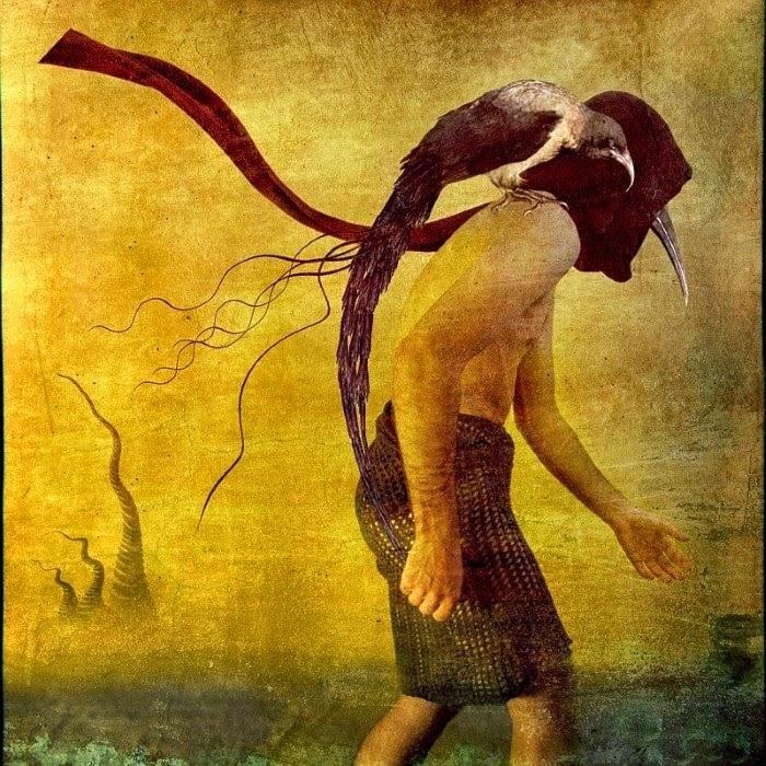 Идущий по лезвию реальности. Bono Zwir