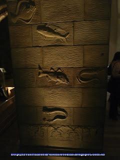 Sala de los dinosaurios del Museo de Historia Natural de Londres.