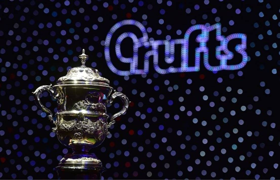 Crufts-trophy