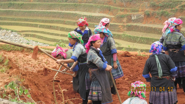 Mu Cang Chai, Yen Bai - Photo Mong Hong