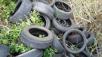 pneus acumula água e da dengue