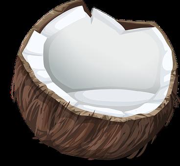 manfaat-buah-kelapa-bagi-kesehatan,www.healthnote25.com