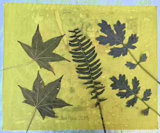Wet cyanotype_Sue Reno_Image 204