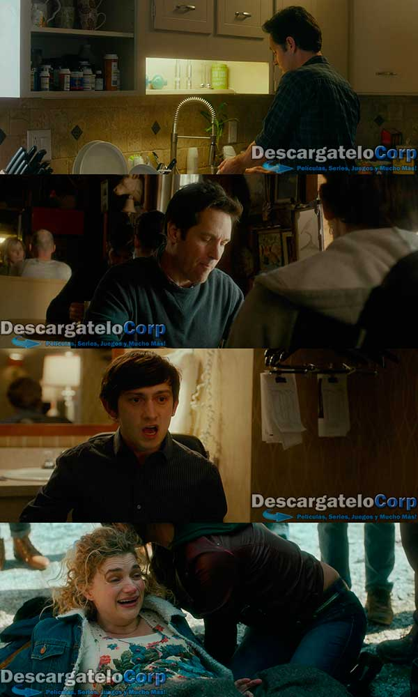 The Fundamentals of Caring HD 1080p Latino
