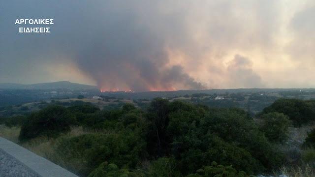 Υψηλός κίνδυνος πυρκαγιάς σήμερα και για την Αργολίδα - 32 δασικές πυρκαγιές το τελευταίο 24ωρο