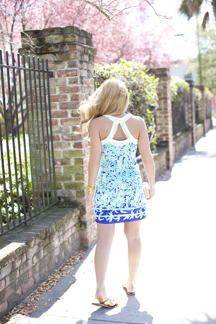 Back of Lilly Pulitzer Leah Shift Dress
