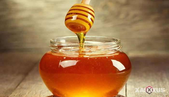 Cara memerahkan bibir dengan madu