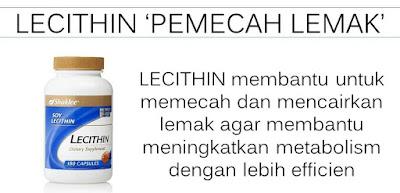 LECITHIN AGENT PEMECAH LEMAK