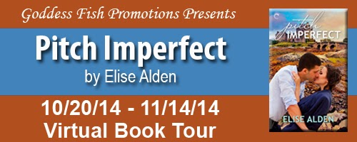 http://goddessfishpromotions.blogspot.com/2014/08/vbt-pitch-imperfect-by-elise-alden.html
