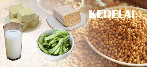Kenali Manfaat Kacang Kedelai banyak Khasiat untuk Tubuh