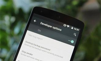 Mengaktifkan Sajian Opsi Pengembang (Developer Option) Di Hp Android Lenovo