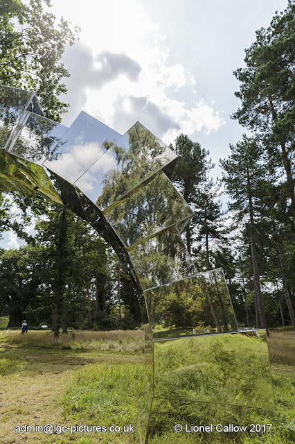 A large polished stainless steel ring  set in the middle of the woods