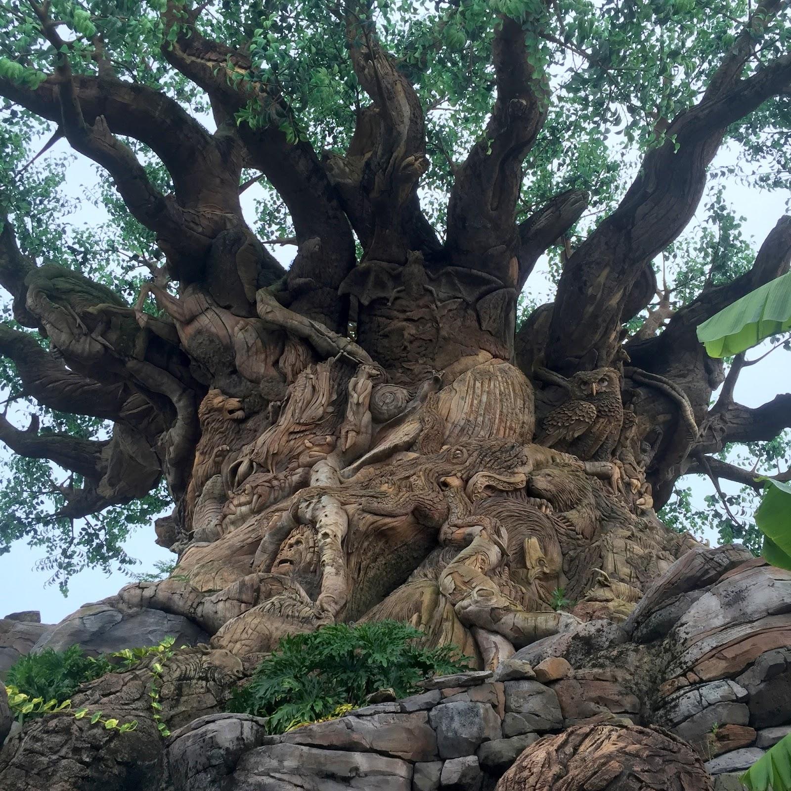 My Paisley World All About Disney S Animal Kingdom Tree