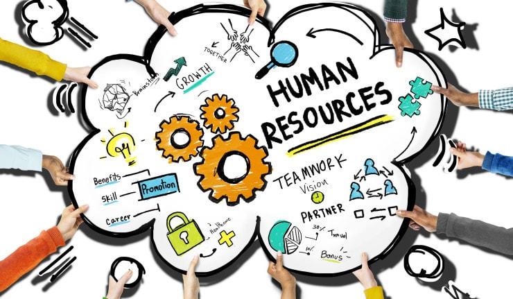 Ilmu pengetahuan basic HR (Human Resource) - gaji, cuti, berhenti kerja, probation period