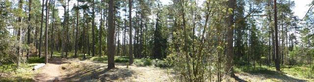 Store Mosse Nationalpark Schweden Urlaub Camping Campingtrip mit Hund