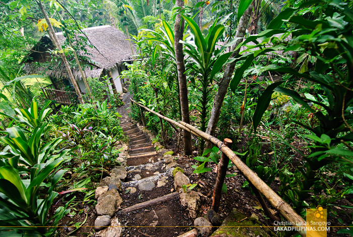 Zipline Inn Tibiao Antique