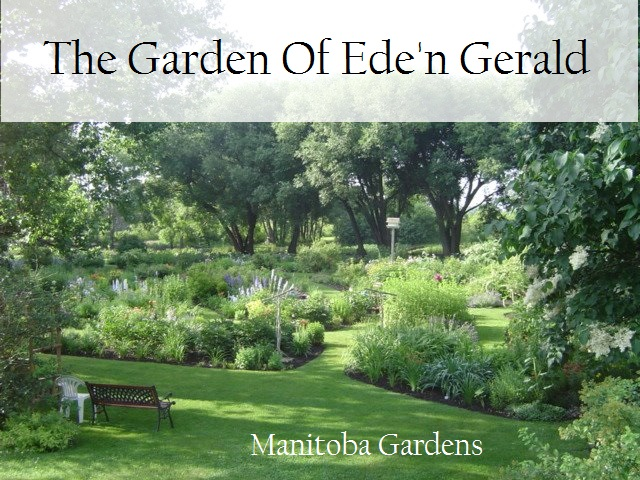 Garden of Eden Gerald