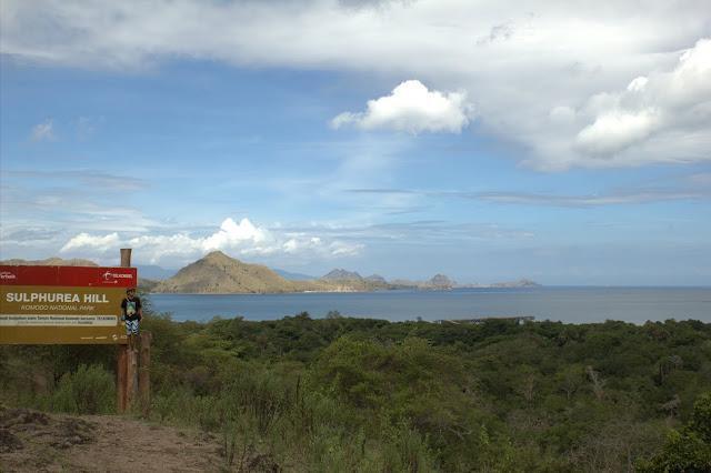 sulphurea hill pulau komodo Flores
