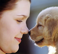 Hayvan sevgisini anlatan burun buruna bir bayan ve yavru köpek