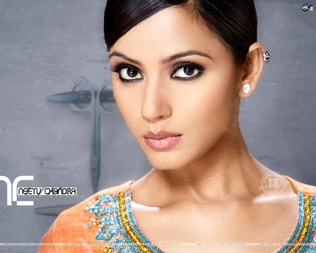 Neetu Chandra Wallpaper