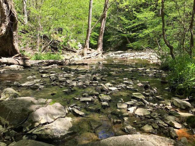 Rugged landscape at McCormick's Creek State Park. Image credit Lindsay of Let Me Give You Some Advice.