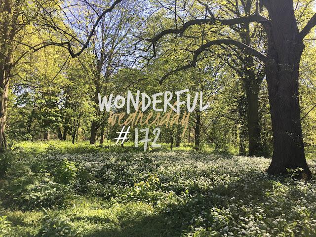 Wonderful Wednesday #172