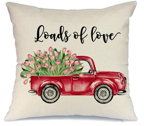 Loads of Love Pillow