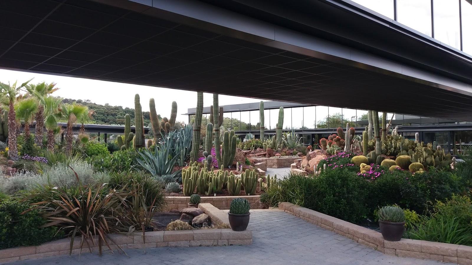 Ya podemos visitar desert city en madrid jardiner a y for Jardines que visitar en madrid