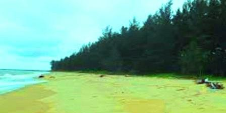 Pulau Selimpai  pulau selimpai paloh pulau selimpai kalbar pulau selimpai