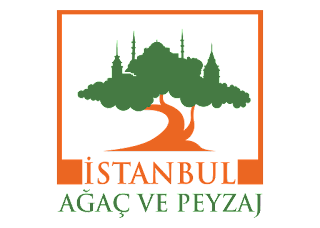Istanbul agac ve peyzaj Logo Vector